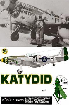 Jet & Prop by FalkeEins: P-51 Mustang
