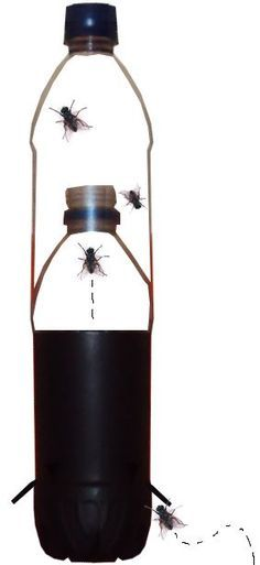 Mata Mosquito, Fish Ponds Backyard, Flylady, Fire Extinguisher, Home Hacks, Cleaning Hacks, Coffee Maker, Perfume, Bottle