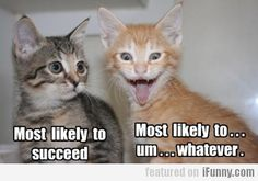 Most Likely To Succeed...