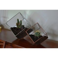 Earth Terrarium Kit, medium cube glass planter in copper or silver... ($55) ❤ liked on Polyvore