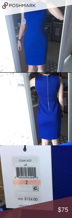 NWT - Blue Calvin Klein Dress **FINAL PRICE DROP** Beautiful blue Calvin Klein Dress. The lines of this dress are hour glass shaped, which makes for a very flattering fit. No tears, rips, or flaws. Never worn. Im just clearing out my closet! Calvin Klein Dresses