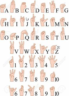 Buy Sign Language A To Z Numbers Hands Pack by LironPeer on GraphicRiver. Vector illustrations pack of sign language ABC and numbers. Sms Language, Sign Language Phrases, Sign Language Alphabet, American Sign Language, Language Lessons, Sign Language For Kids, Learn Sign Language Free, Sign Language Tattoo, Baby Sign Language Chart