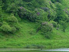 Nature Is God's Gift (21 images) - ImageBlogs.org | Wonderful Image Island |ImageBlogs.org | Wonderful Image Island