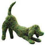 Topiary Dog Playing, Moss filled Dog, green sculpture