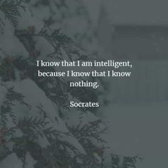 60 Famous quotes and sayings by Socrates. Here are the best Socrates quotes to read that will help you achieve wisdom in life. Socrates is a. Socrates Quotes, Stoicism Quotes, Western Philosophy, Philosophy Quotes, Knowledge And Wisdom, Afraid Of The Dark, Good Wife, Busy Life, Human Condition