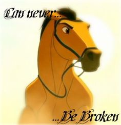 The Spirit That Can Never Be Broken... - spirit-stallion-of-the-cimarron Photo: