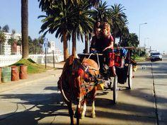 El lunes visitamos a Valparaíso, una ciudad cerca de 2 horas manejando desde Santiago en la costa de Chile. Nos quedamos una noche en la ciudad en un hermoso hotel con desayuno incluido. En el primer día caminamos alrededor de la ciudad y visitamos unos mercados y compre cosas turísticas. En el segundo día fuimos a Viña del Mar, que estaba a 30 minutos en coche y paseamos en un carruaje tirado por caballos. Después de eso caminamos alrededor de Viña del Mar y visitamos los lugares de…