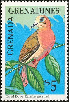 Eared Dove stamps - mainly images - gallery format Going Postal, Wild Creatures, Vintage Stamps, Glam Rock, Stamp Collecting, Grenadines, Beautiful Birds, Pet Birds, Ephemera