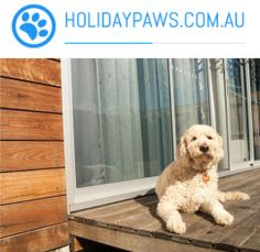 This site is specifically designed for finding a holiday property where you can take your pet. Not only that, it also makes that search a whole lot easier by providing all the property information that a descerning pet owner will need. Get all the details from www.holidaypaws.com.au