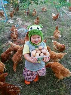 Cute Baby Play With Chickens. Funny Animal Videos, Videos Funny, Dance With Devils, Animals And Pets, Cute Animals, Farm Animals, Garden Animals, Baby Play, Beautiful Cats