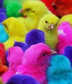 32 Best Pop Art Easter Images Pop Art Easter Art
