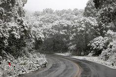 Neve-São Joaquim-Roteiro Serra Catarinense