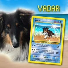 Artist Illustrates Pets Into Pokemon Cards And They Look Absolutely Adorable Dog Pokemon, Pokemon 100, Pokemon Fusion, Sherlock, Fake Pokemon Cards, Game Of Thrones, Pokemon Coloring Pages, Pokemon Trading Card, Fimo