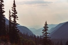 View from Trail Ridge Road - Colorado Sept. '06