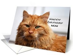 Mom Happy Birthday, Orange Maine Coon Cat card #mother http://www.greetingcarduniverse.com/mom-birthday-cards/general-mom-mother/mom-happy-birthday-orange-maine-677503?gcu=42967840600