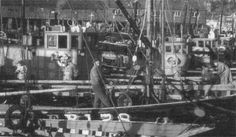 Photos - The scottish herring fleet in 1957. This photo was taken by Mr Bullock of the Silver Harvest which was later to win the Prunier herring trophy in 1960