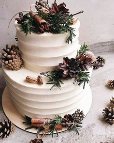 Winter Inspired Wedding Cakes — the bohemian wedding Winter Wedding Cakes wit. Winter Inspired Wedding Cakes — the bohemian wedding Winter Wedding Cakes with Rustic Details This image has get Wedding Cake Designs, Wedding Cake Toppers, Wedding Cake Rustic, Elegant Wedding, Bohemian Wedding Cakes, Woodsy Cake, Perfect Wedding, Monogram Wedding, Cake Decorating