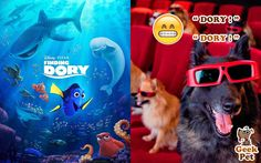 #FindingDory‬ #BuscandoADory‬ #nemo‬ #dory‬ #marlin‬ #cine‬ #movie‬