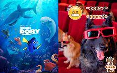 #FindingDory #BuscandoADory #nemo #dory #marlin #cine #movie