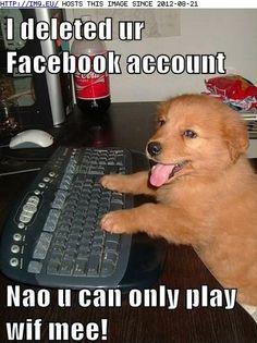 #puppy #cute #funny