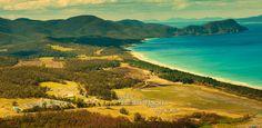 Falls Festival Marion Bay (Tasmania) - New Year's Plans!