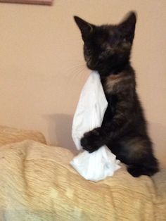 What is it with pinching all the tissues?