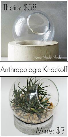 anthropologie terrarium knockoff