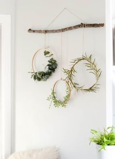 Diy and crafts diy projects - Simple winter decorating idea - wreaths hanging from a branch tutorial how-to D. Winter Home Decor, Winter House, Decoration Branches, Hanging Decorations, Tree Branch Decor, Branch Art, Diy Wall Decor, Diy Home Decor, Creative Wall Decor