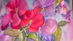 Colorful Orchids. watercolor by Beverly Chandler