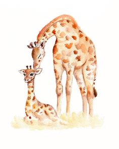 Giraffes- Mother and baby watercolor print -5 x 7 inch by Marysflowergarden on Etsy https://www.etsy.com/listing/165231634/giraffes-mother-and-baby-watercolor