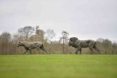 horse, outdoor and natureYou can find Landscape art and more on our website.horse, outdoor and nature Landscape Photos, Landscape Art, Lion Walking, Wild Lion, Sculptures, Lion Sculpture, He Is Able, Bronze Sculpture, Big Cats