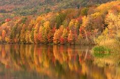 colors & reflections of fall