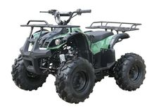 Yamaha Grizzly Clone,Automatic with Reverse,19