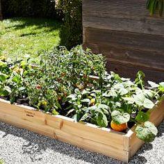 Raised Garden Beds & Planter Boxes | Williams-Sonoma
