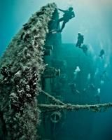 tripbucket | Dream: Wreck Dive MS Zenobia, Larnaca, Cyprus