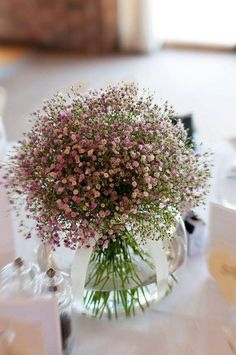 Pink gypsophila this would go with the girls' dresses however there's none in your bouquet. Simple Flowers, My Flower, Fresh Flowers, Beautiful Flowers, Flower Ideas, Flower Power, Tiny Flowers, Colorful Roses, Simply Beautiful