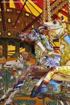 Fairground Carousel.  Of all the merry-go-rounds I've seen and/or ridden, I don't remember being on one traveling clockwise like this one.