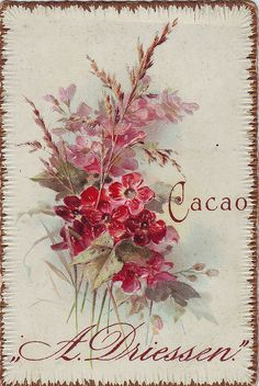 cacao driessen flower spray embossed 2 by patrick.marks, via Flickr