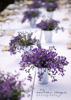 potted centerpiece