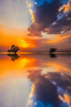 Beautiful reflectoin