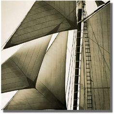 Galleria Silecchia l Michael Kahn Photographs l Sailing Vessels 5 Sailing Pictures, Sailboat, Photography, Sailing Boat, Photograph, Sailboats, Fotografie, Photoshoot, Sailing Yachts