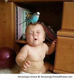 cute baby expressions, Funny Images, Photos Online, Funny Jokes, is a funny way in life! So Cute Baby, Cool Baby, Baby Kind, Baby Love, Cute Kids, Precious Children, Beautiful Children, Beautiful Babies, Funny Babies