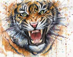 tiger-watercolor and acrylic. --  Art by Olga Shvartsur