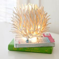 The Cat Who Went Bananas. Oh, and an awesome Shredded Coconut lamp! fab find: pb teen, pssst, it's not just for teens ~ Bella Boho - Stylish Living