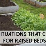 Why You May Need To Stockpile Supplements For SHTF Building Raised Garden Beds, Raised Beds, Shtf, Outdoor Decor, Garden Bed