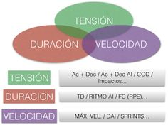 Periodización Táctica Qué Es Modelo De Juego Principios E Información Periodizacion Modelos El Principito