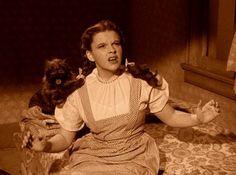 Wizard of Oz Movie Stills | Wizard of Oz Screencaps - the-wizard-of-oz Screencap