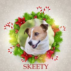 Skeety is our first