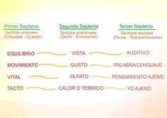 JARDIN de GIMAWARI Pedagogía Waldorf: Los doce sentidos (Parte I)