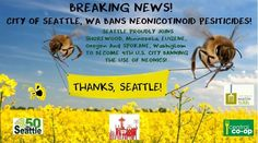 The Seattle March Against Monsanto has done it- On Monday, it was put to a vote and now ‪#Seattle‬ officially BANS all harmful ‪‎Neonicotinoids‬! http://chn.ge/1xffZwr